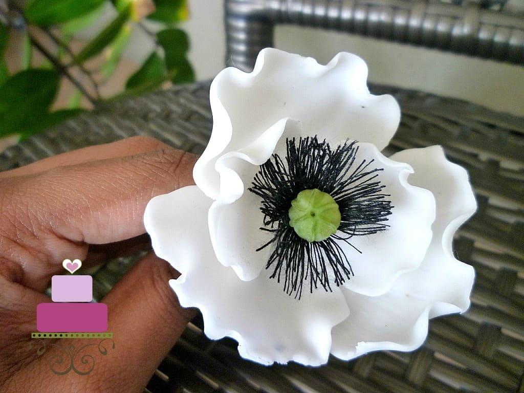White gum paste poppy flower with black and green center