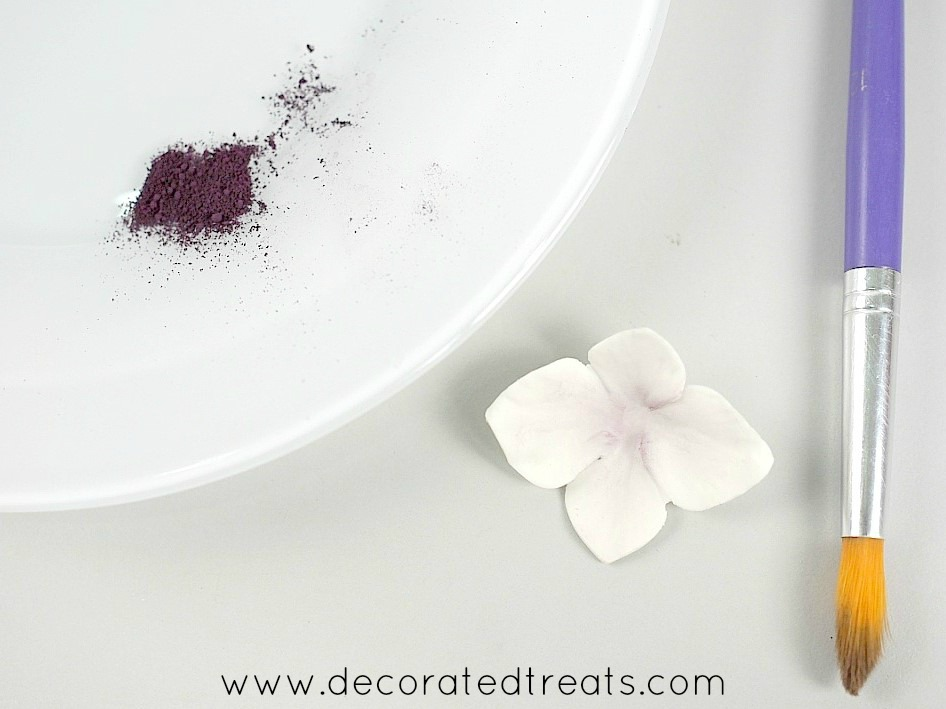 White hydrangea flower with a white painting pallete in the background filled with dark purple petal dust
