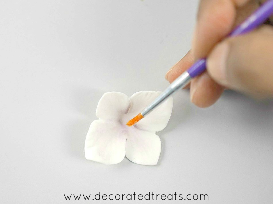 Brushing the center of a hydrangea petal