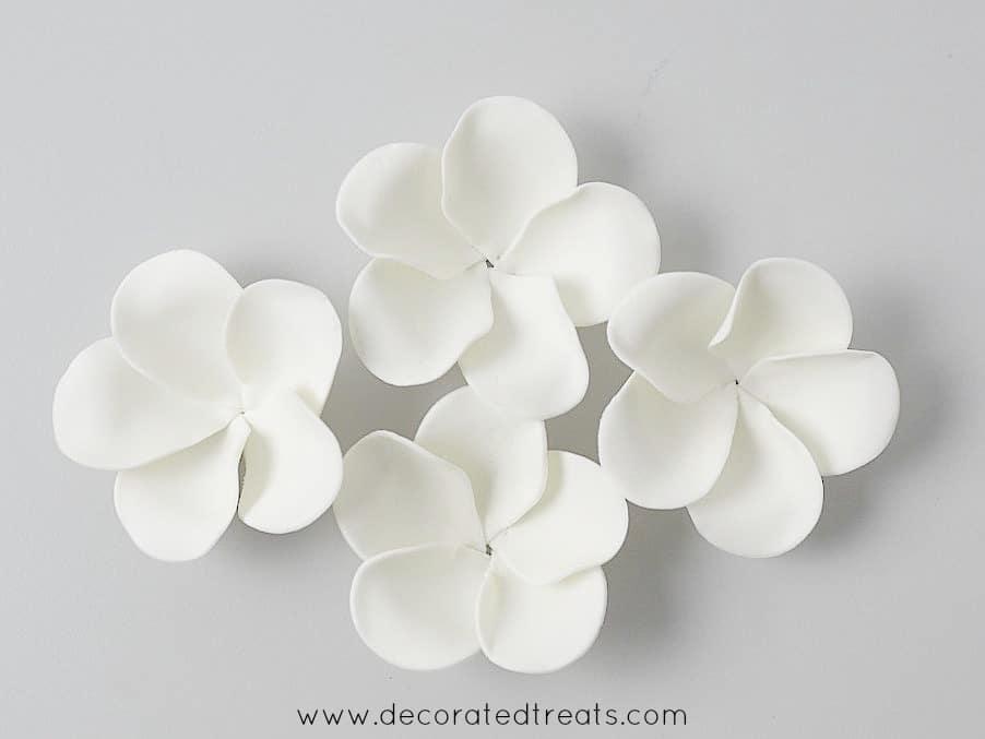 A group of white plumerias