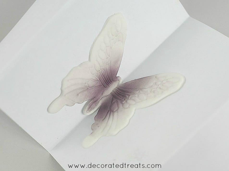 Gum paste violet butterfly on a piece of folder paper