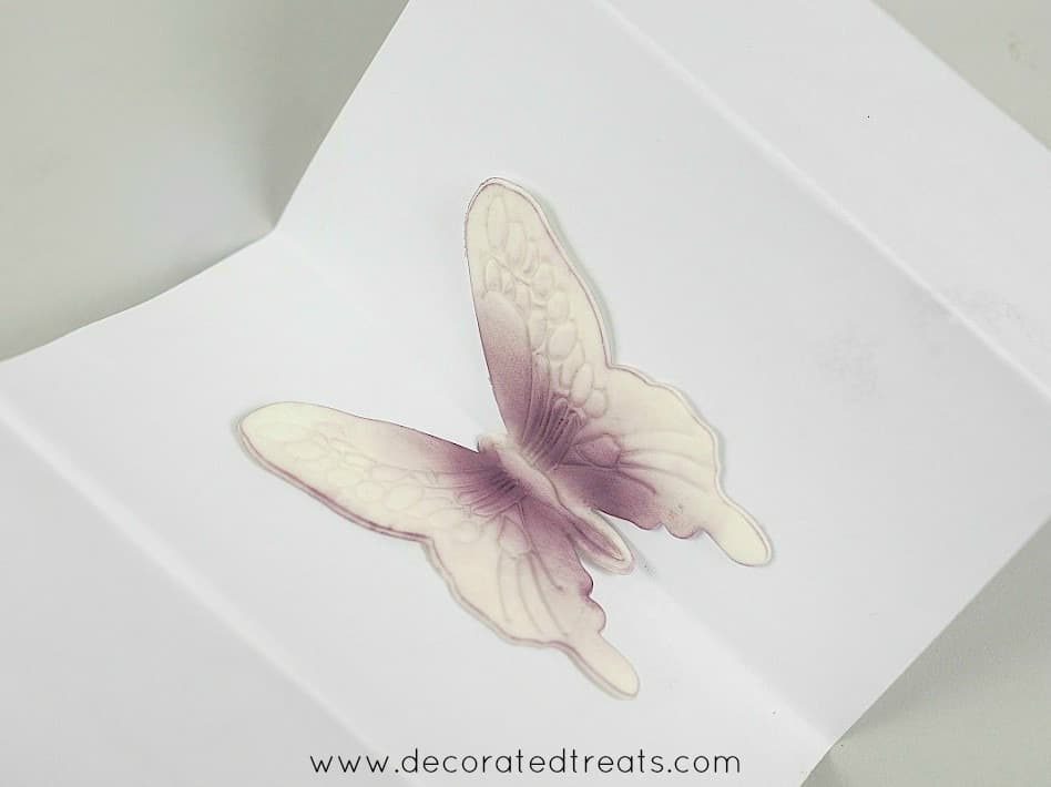 Gum paste violet butterfly on a piece of folded paper