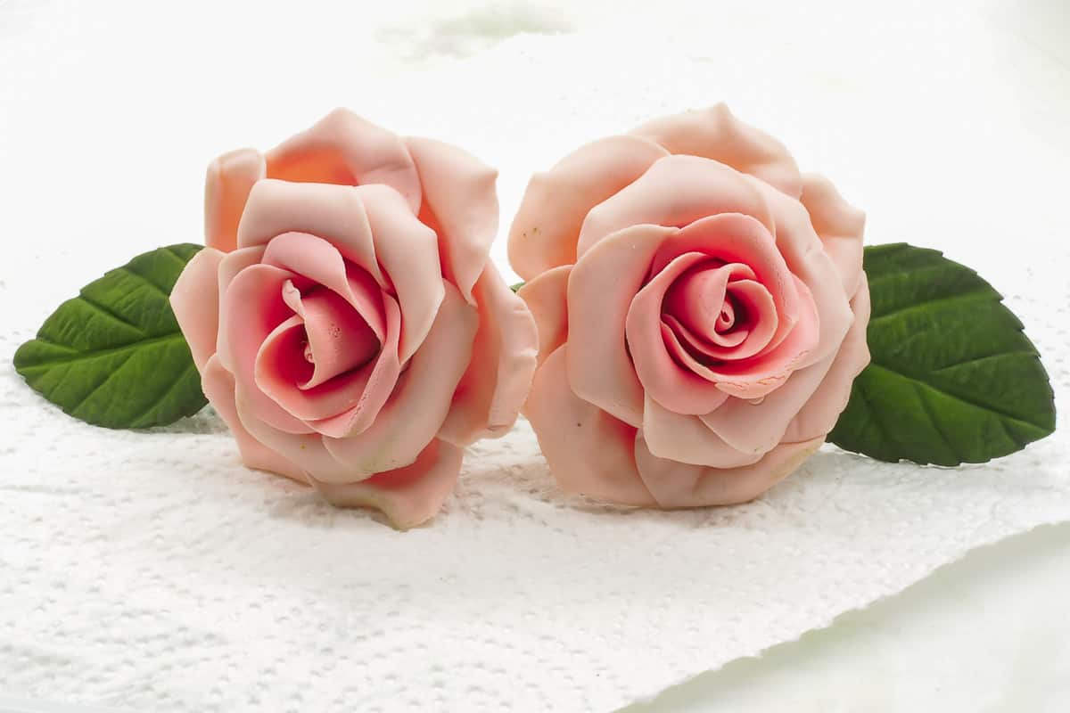 2 pink gum paste roses on a white tissue. Also attached are 2 green leaves on either side