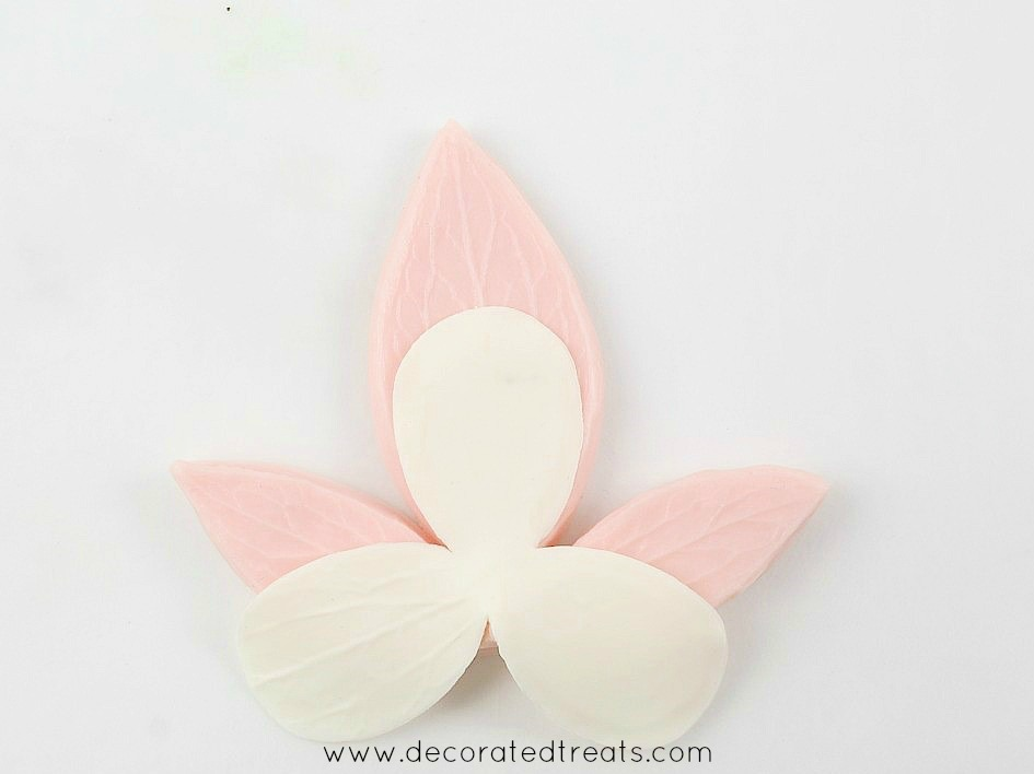 Using a pink veining tool to imprint vein marks on gum paste flower petals