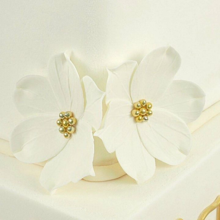 2 white gum paste flowers on the corner of a cake