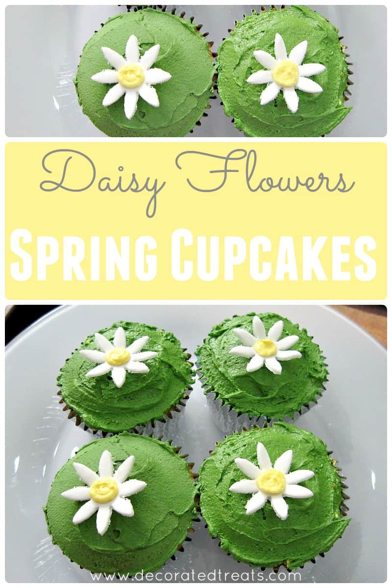 Poster for spring cupcakes