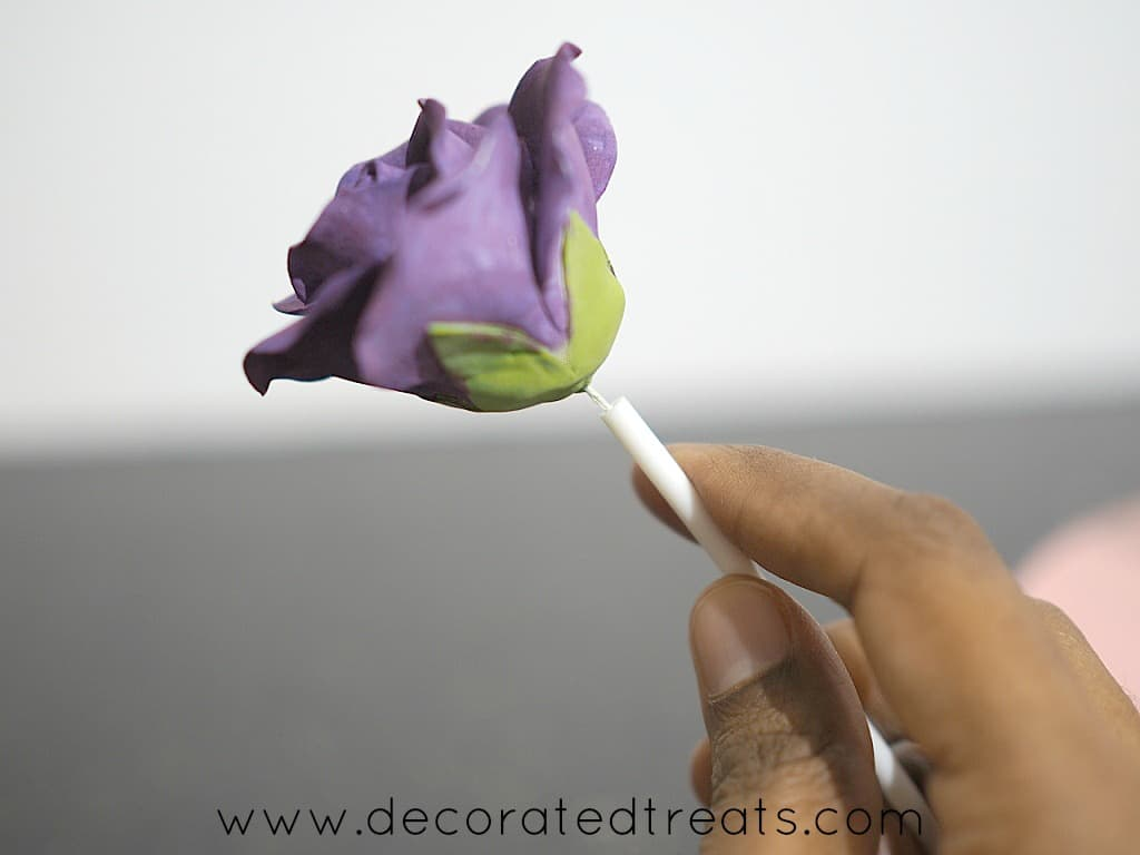 Holding a purple gum paste rose in a lollipop stick