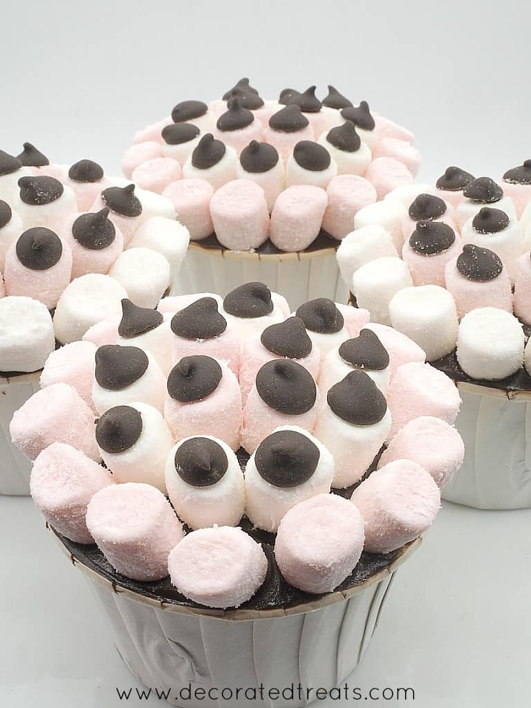 cupcakes on a plate, decorated with mini white and pink marshmallows and chocolate chips