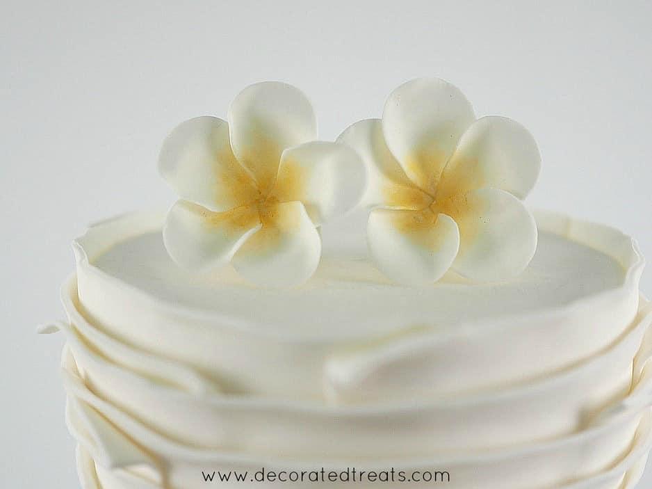 2 gum paste plumeria on top of a cake