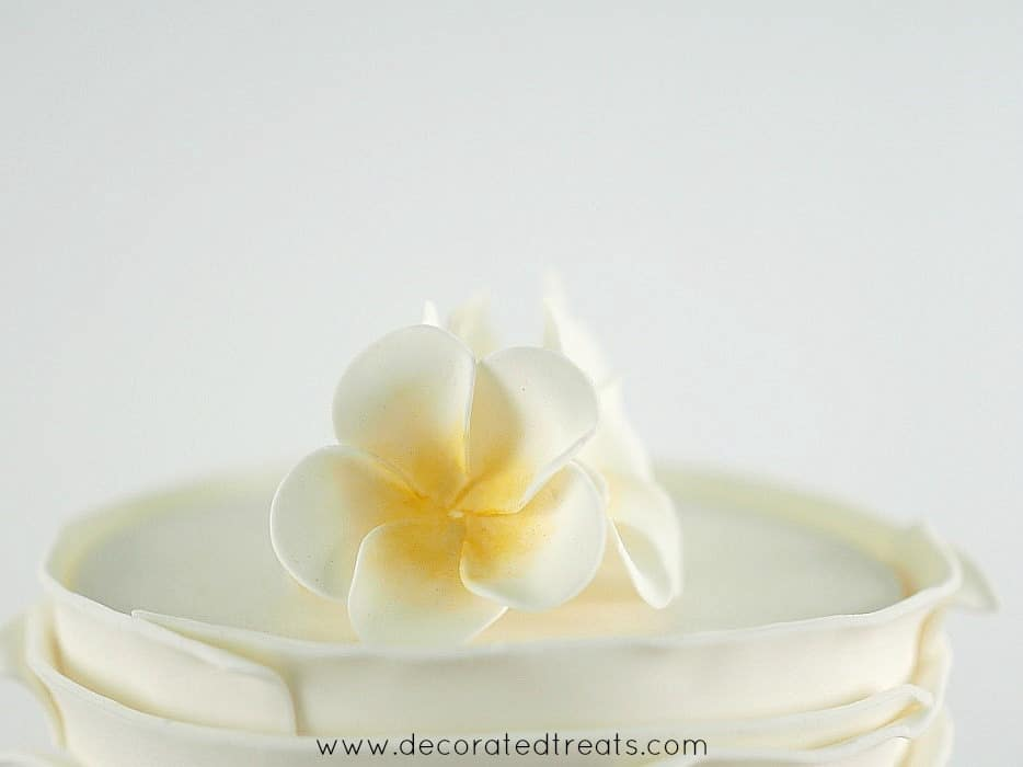 Side view of plumerias on a cake