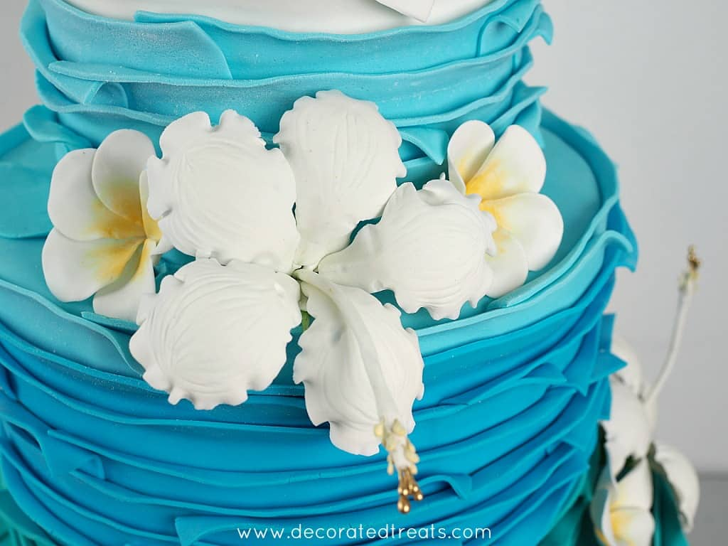 White gum paste hibiscus on a cake