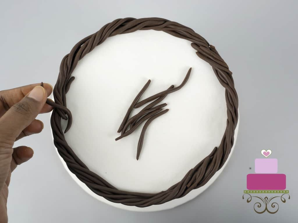 Strips of thin brown fondant twigs on a white cake