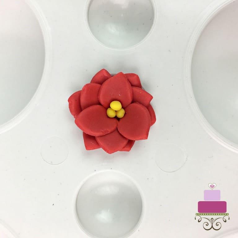 Tiny fondant poinsettia flower in a flower former