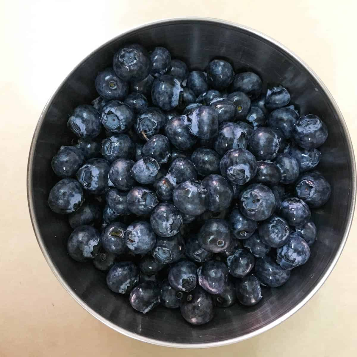 A small bowl of fresh blueberries