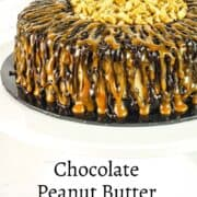 A round cheesecake with caramel and chocolate drizzle and chopped peanut center.