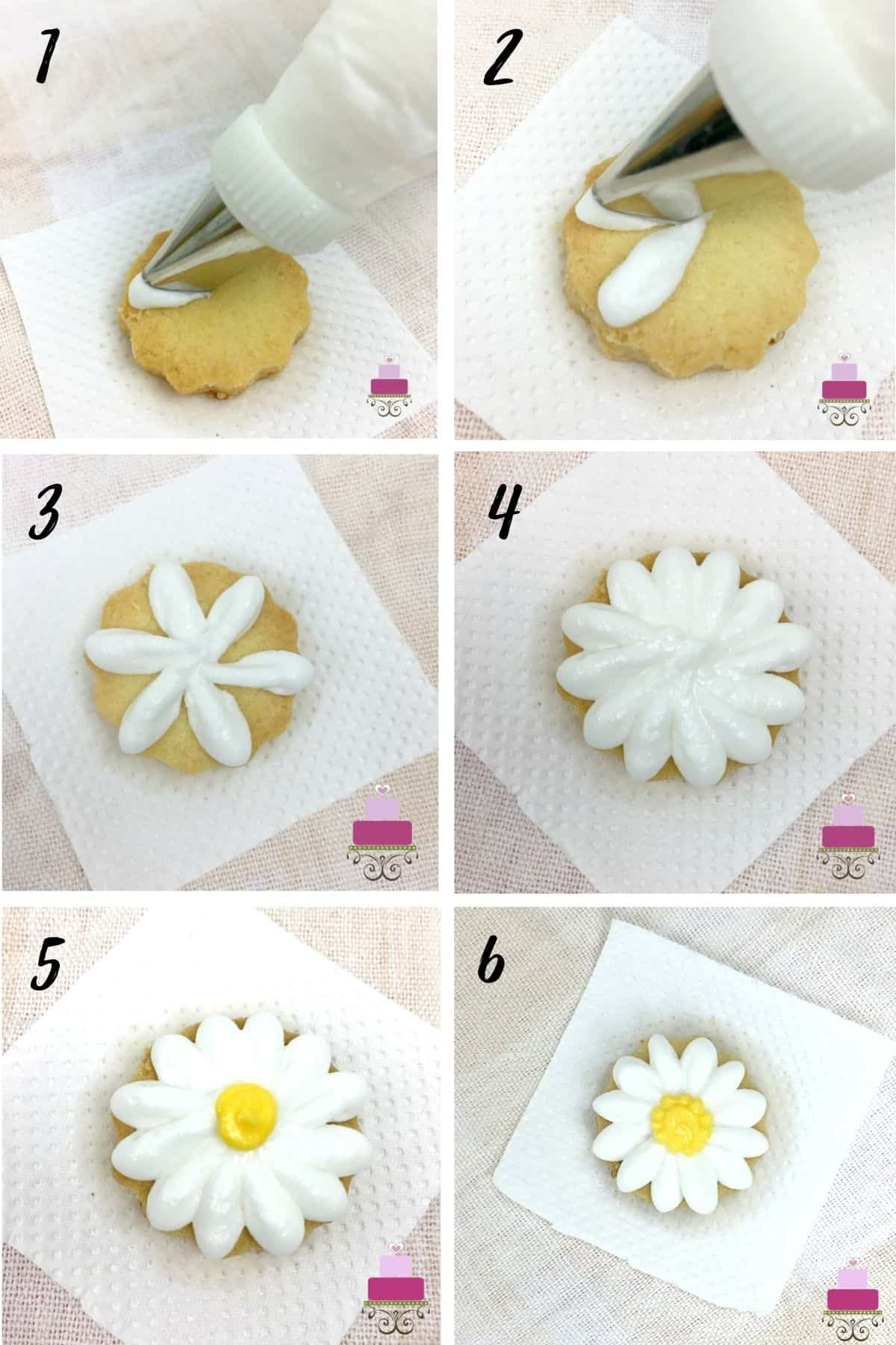 A poster of 6 images showing how to piped daisy flower on a cookies with royal icing