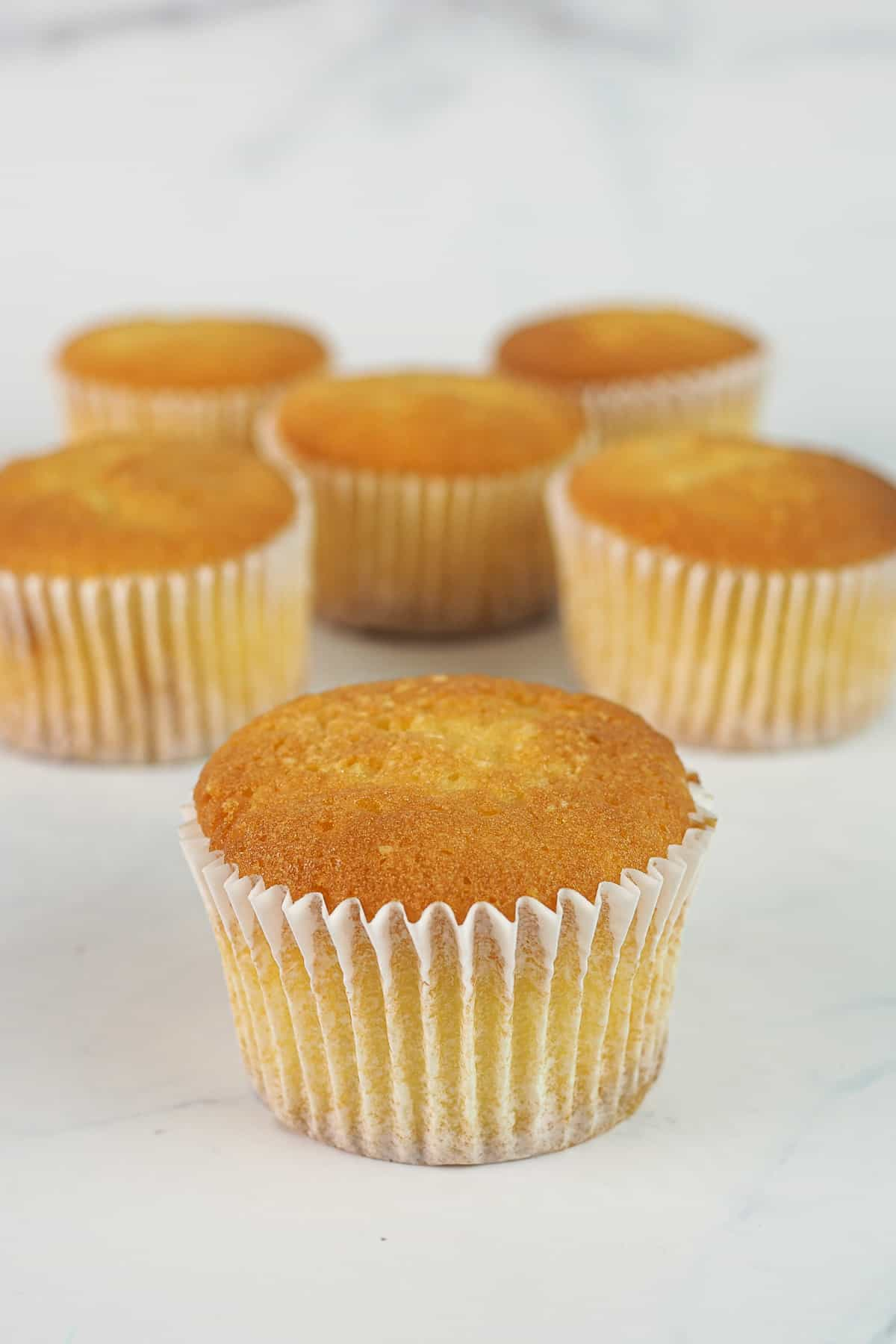 Plain vanilla cupcakes baked from scratch