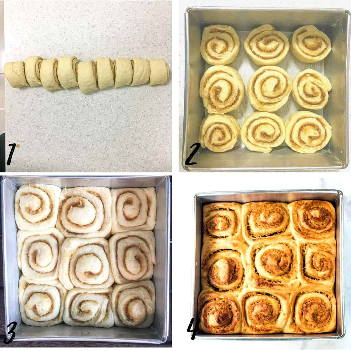 A poster of 4 images showing how to cut, proof and bake coconut rolls