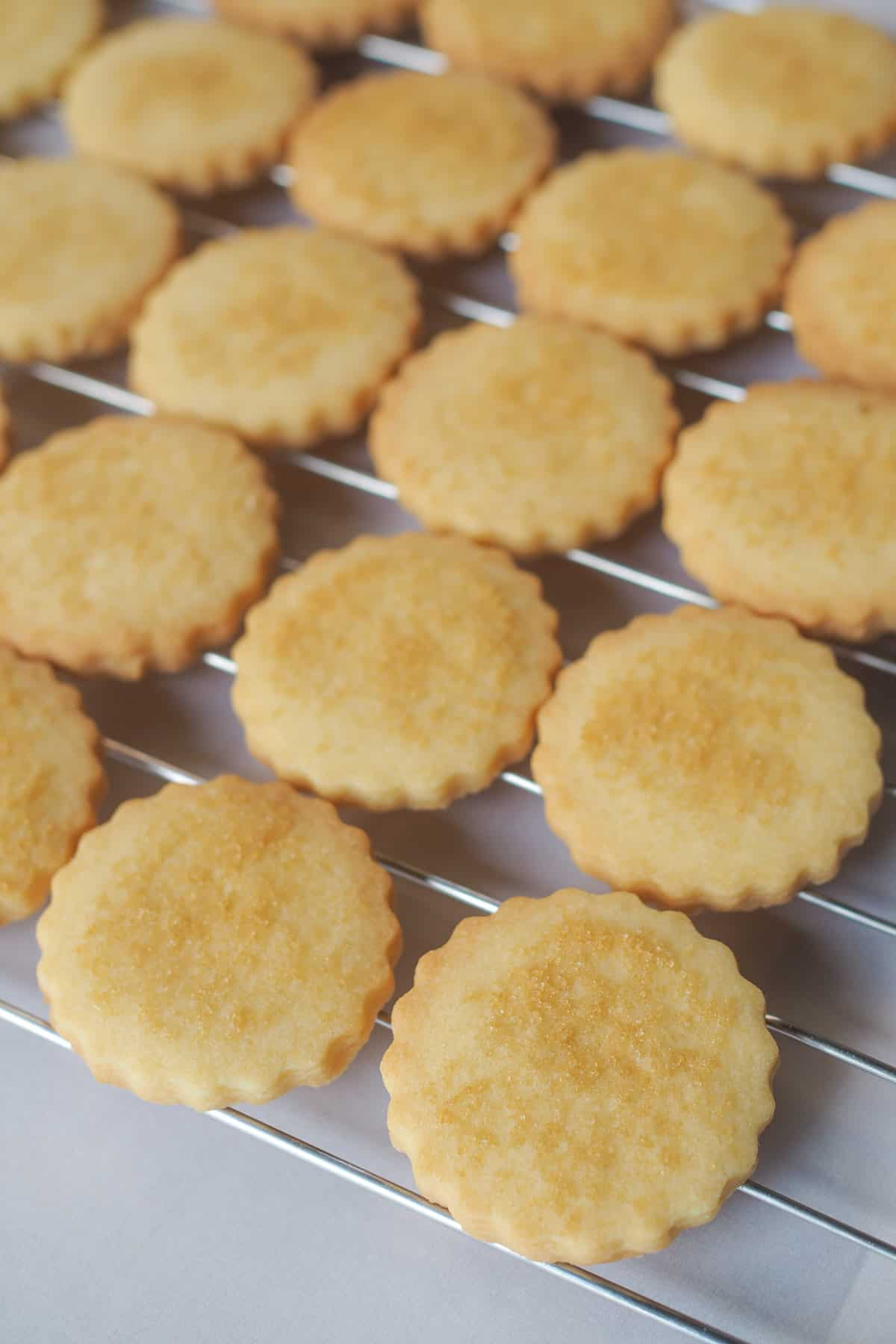Scalloped cut out eggless sugar cookiescookies on a wire rack